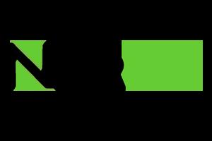 Norbin logo